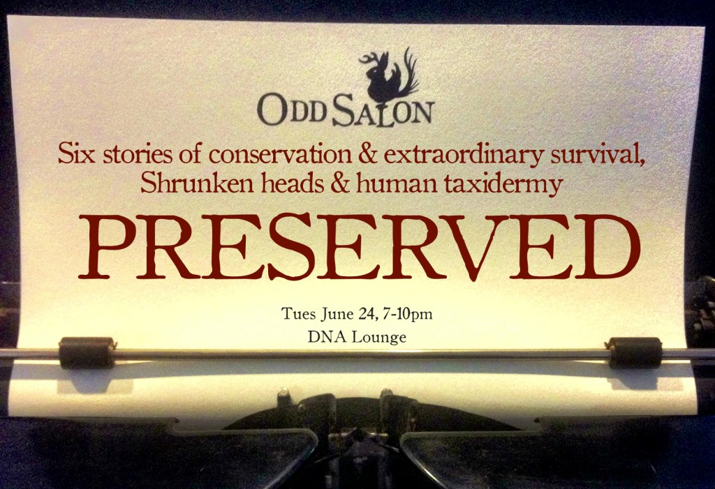 Odd Salon PRESERVED